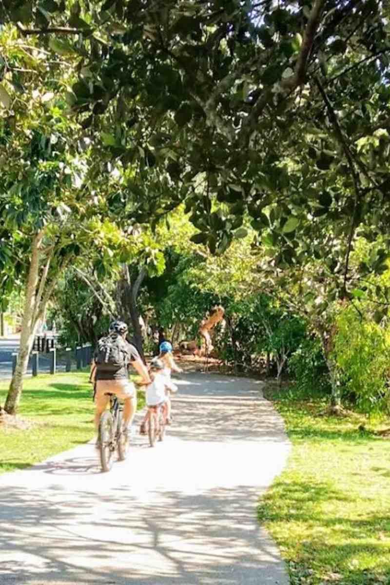 Bike riding Clifton Beach