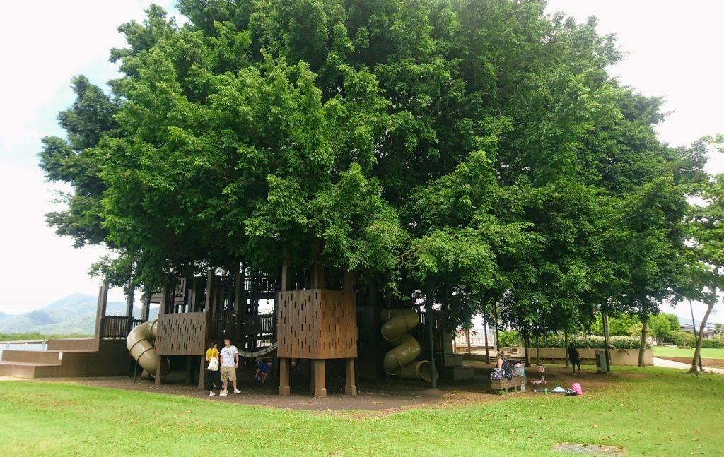 Fig Tree playground