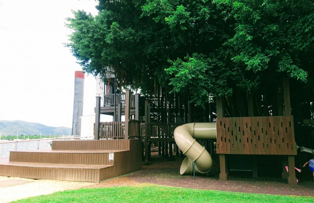 Fig tree playground side view
