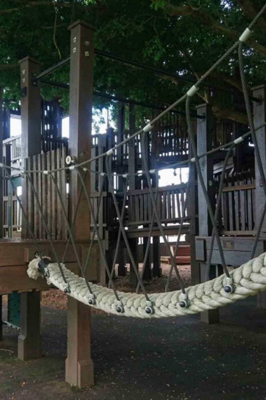 Fig tree playground Cairns